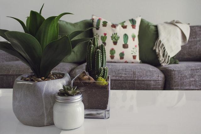 design plantenbakken